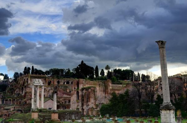 Monte Palatino, sacada desde el Foro Romano