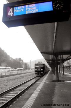 El tren llegando a la estación Siempre puntual