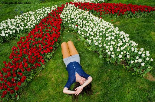 Descansando entre las flores de los jardines de Sultanahmet