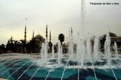 Entrada a la Mezquita Azul, albatros volando y las aguas danzantes