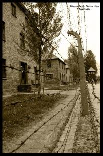 Los alambrados - Auschitz Polonia