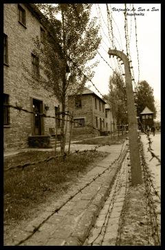 Los alambrados estaban electrificados. Era uno de los metodos elegidos por los reclusos que querían terminar con su condena