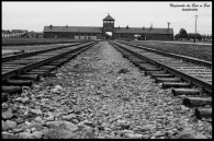 Auschwitz II...