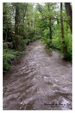 Río en el parque Botánico, a cinco cuadras del centro de la ciudad