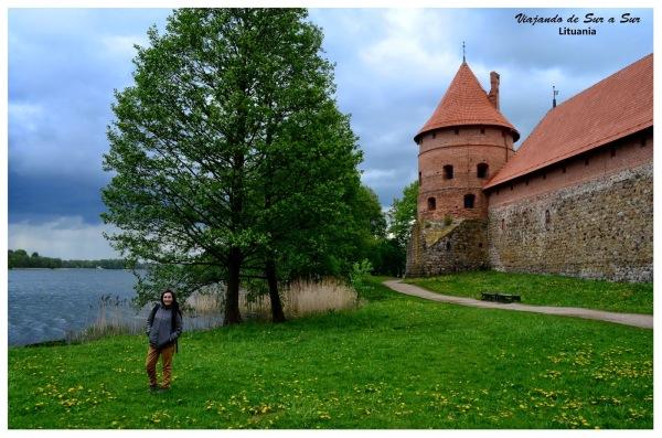 Flor en el Castillo de Trakai