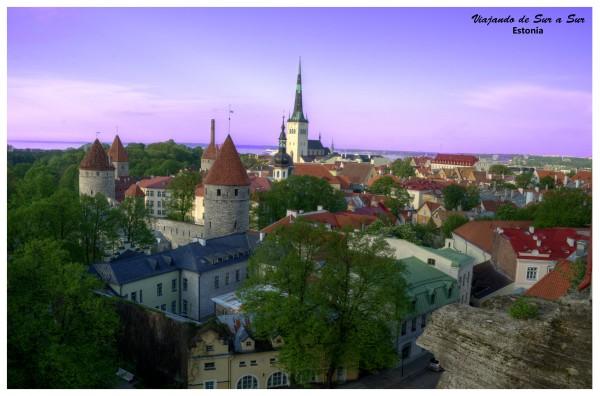 """Panorámica de Tallinn, se puede apreciar la muralla en la zona izquierda, con las torres. Del lado """"de afuera"""", los arboles"""