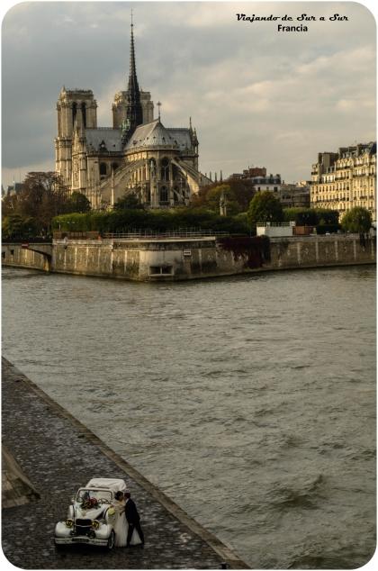 Un casamiento en Notre Dame. Un Pullitzer por esta foto, o Nobel, o lo que le den a los fotografos